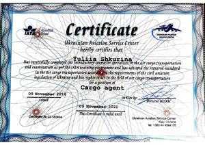 Сертификат IATA Cargosupport